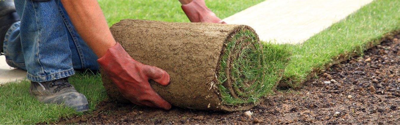 Tratamento de gramados
